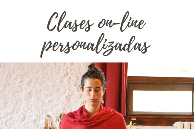 clases online personalizadas